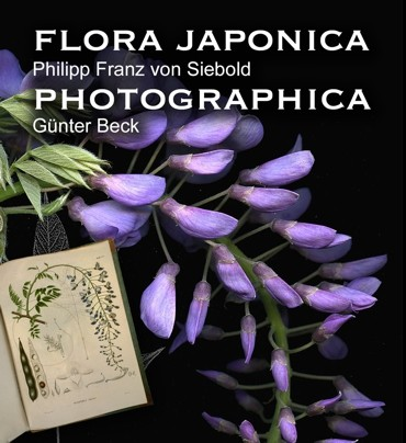 Flora Photographica Günther Beck